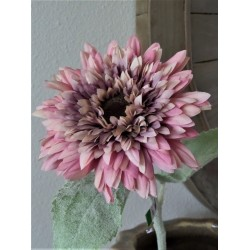 Sunflower roze